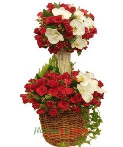 hoa đẹp tặng sinh nhật bạn gái