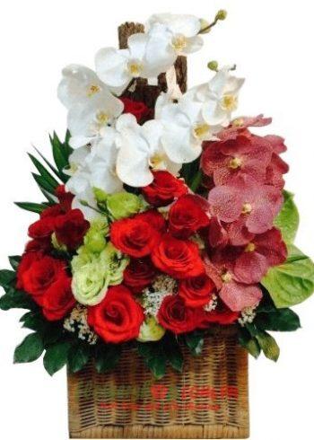 hoa dành cho sinh nhật