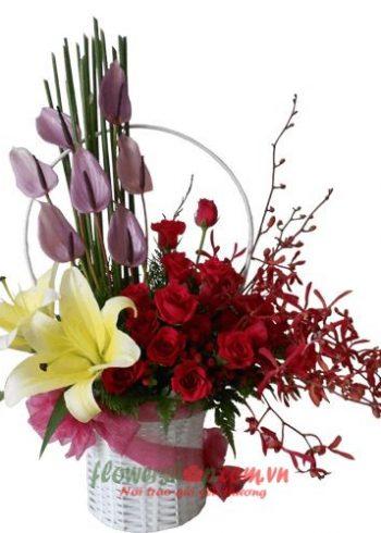 hoa 20-10 đẹp