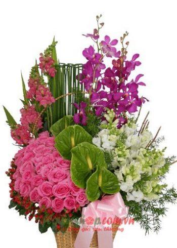 Liên hệ đặt hoa tươi online Long An Hotline: 0937878738