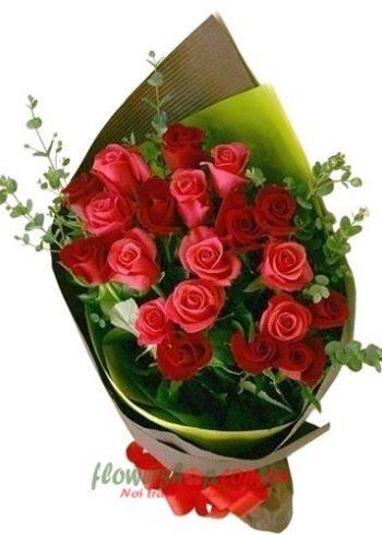 hoa đẹp tặng 20-11