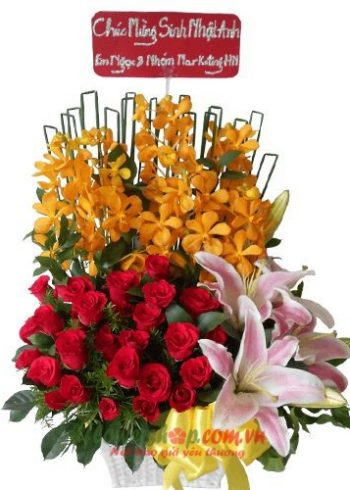 hoa tặng 20-11