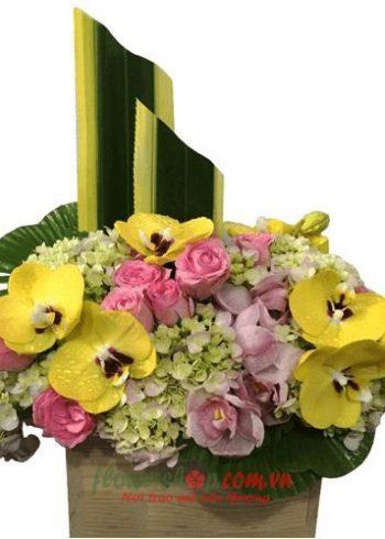 hoa đẹp 20 tháng 10
