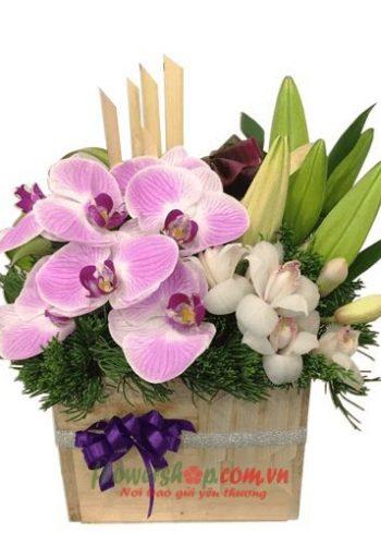 Liên Hệ đặt hoa tươi online Bạc Liêu Hotline: 0937878738