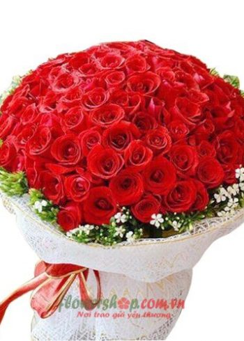 hoa hồng bó tròn