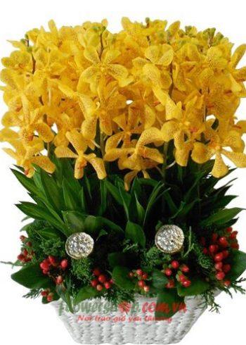 hoa tặng thầy cô ngày 20-11