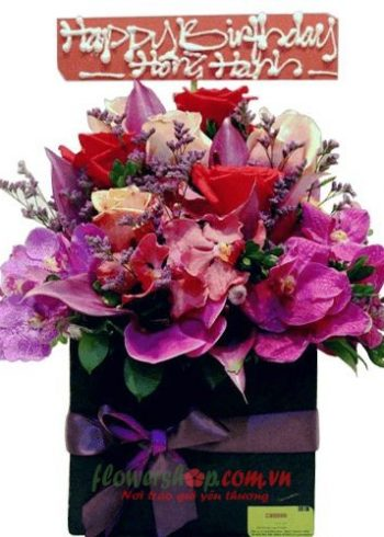 hoa ngày 20-11