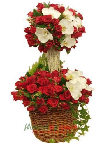hoa hồng đẹp ngày 8-3