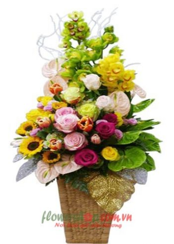 hoa đẹp cho 14-2