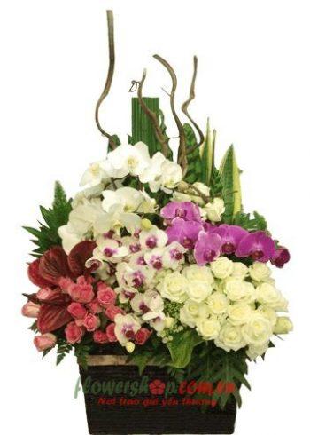 Liên Hệ đặt hoa tươi online An Giang hotline: 0937878738
