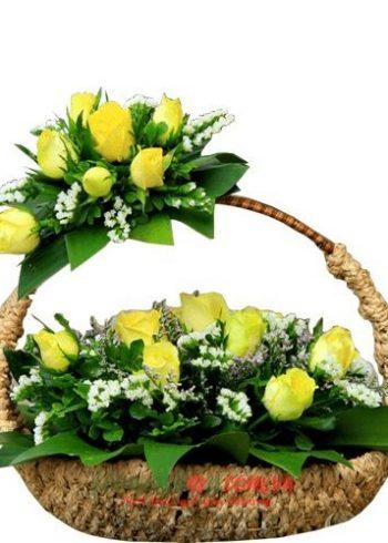 hoa và ngày 20-11