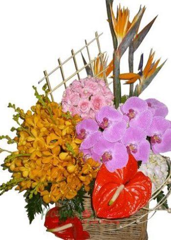 hoa tặng sinh nhật đẹp nhất