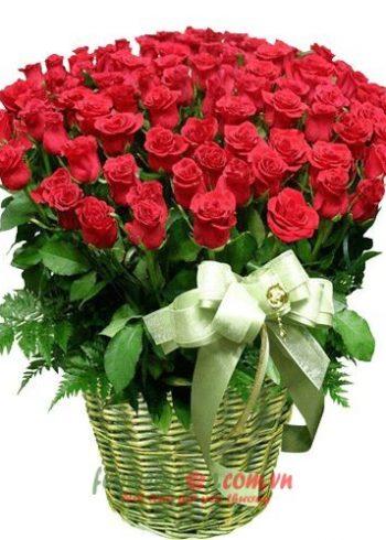 hoa hồng ngày 8-3