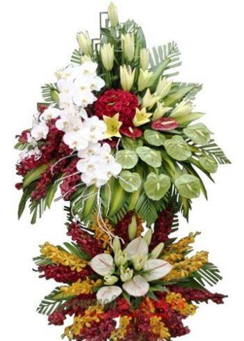 điện hoa huế