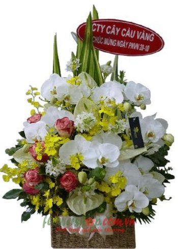 hoa 14-2 đẹp