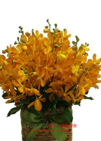 lẵng hoa tặng 14-2