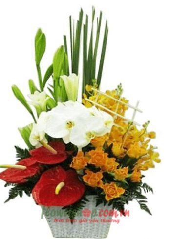 hoa mừng cho sinh nhật