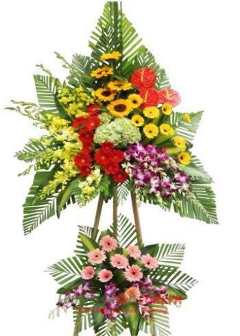 hoa tươi đẹp sài gòn
