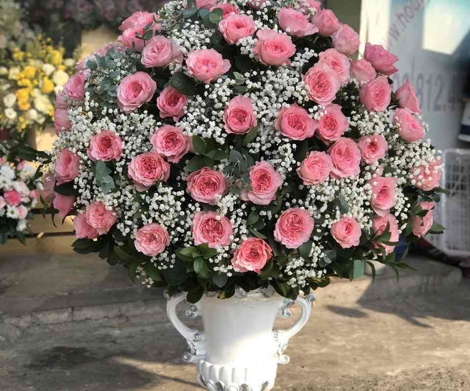 bình hoa hồng cao cấp tại shop