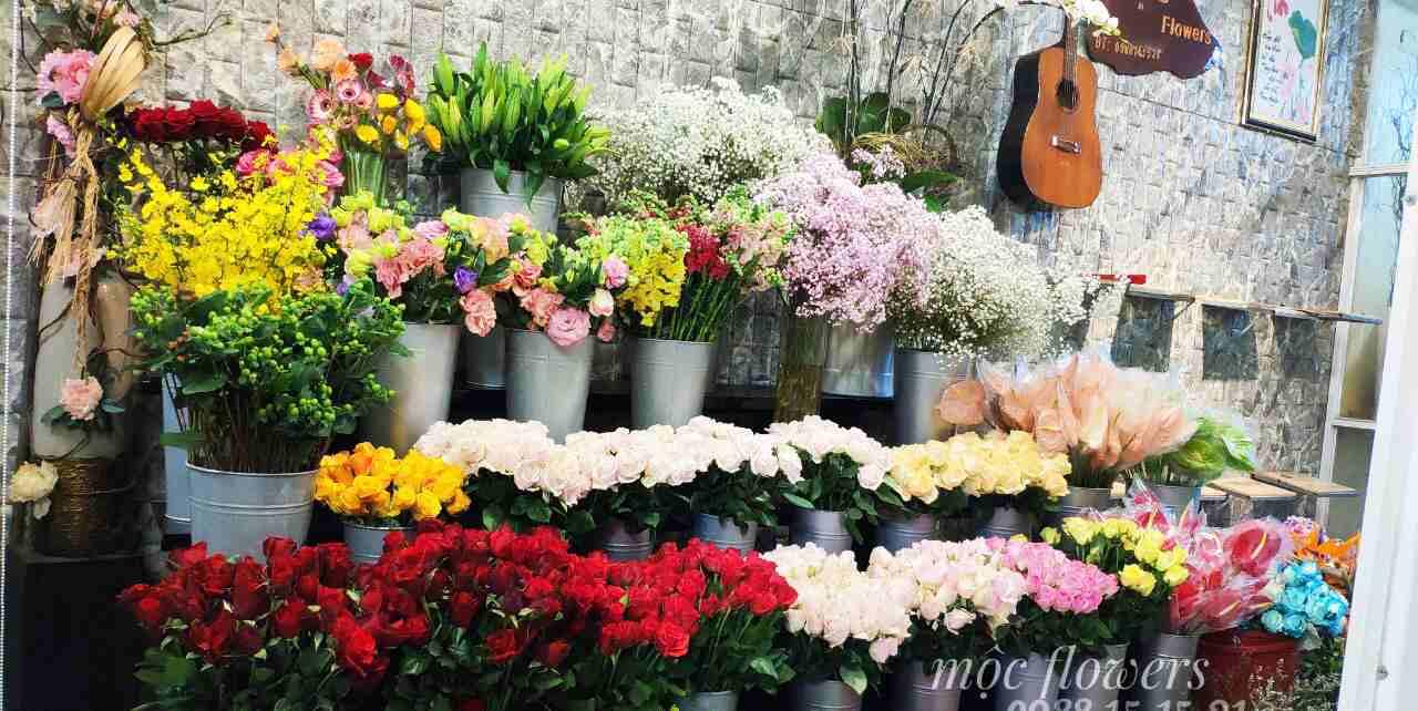 Thế giới hoa giữa lòng thành phố