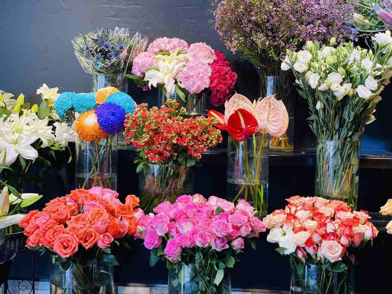 Tại Flower Shop có nhiều loài hoa độc lạ