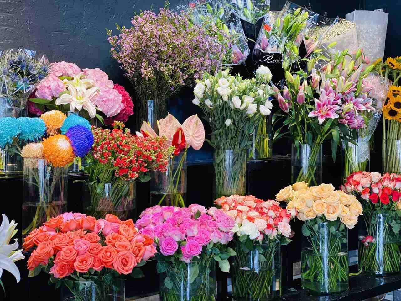 Shop hoa tươi Trảng Bàng