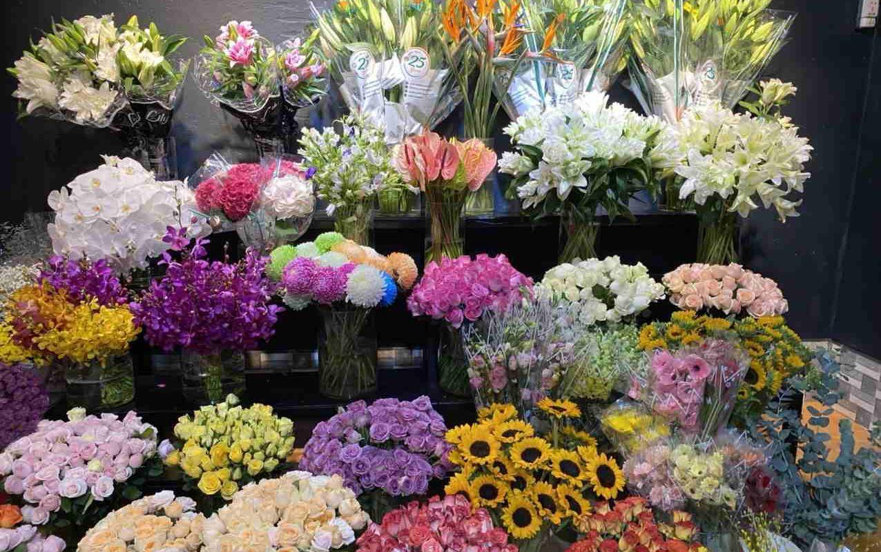 Đa dạng mẫu hoa tươi chất lượng