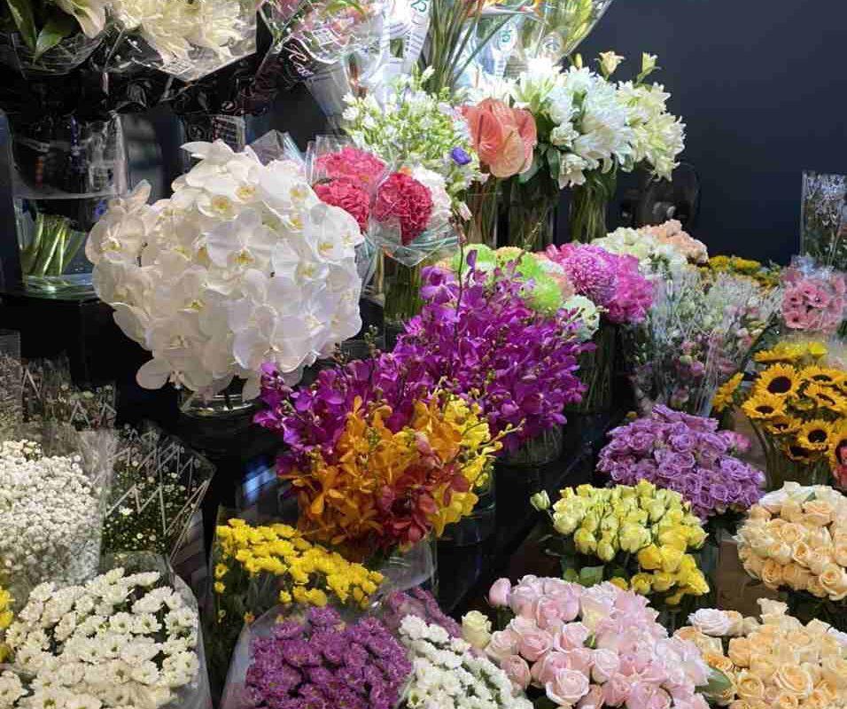 Những bông hoa muôn màu muôn vẻ
