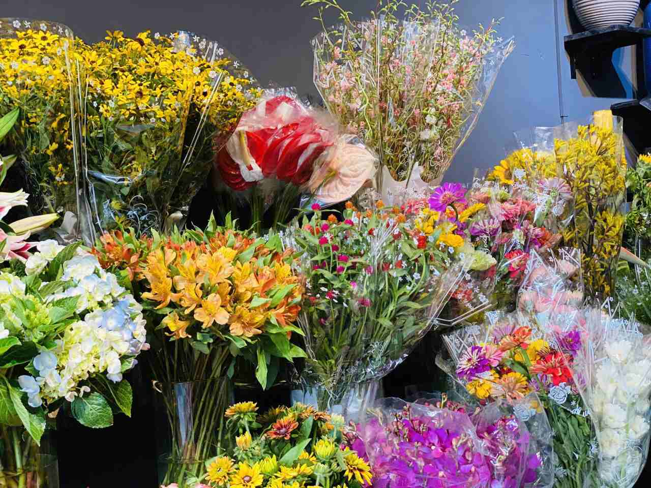 Nhiều loại hoa được trưng bày và chăm sóc cẩn thận và cập nhật hoa mới mỗi ngày