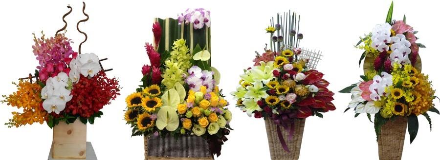 đặt hoa khai trương huyện Hóc Môn | mẫu giỏ hoa mừng khai trương tại Flower shop