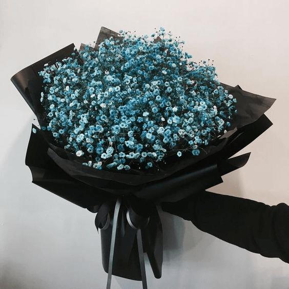 Những loại hoa tại Flower shop