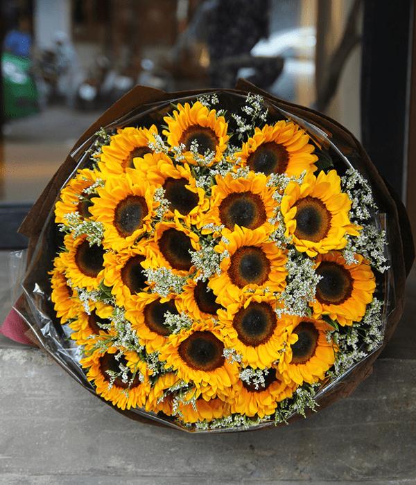 Hoa hướng dương mang rất nhiều ý nghĩa