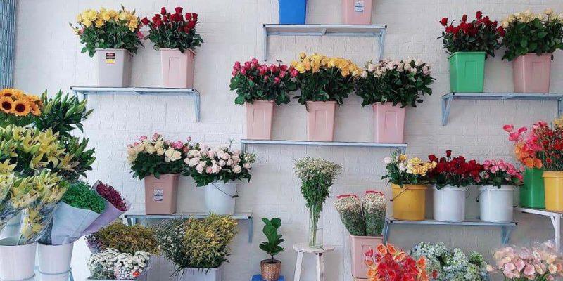 Shoa Trưng Bày tại shop hoa