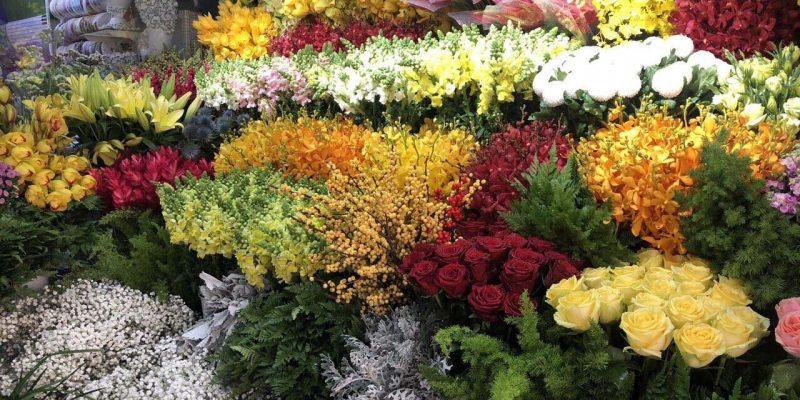 Hoa trưng bày tại shop hoa Tươi Vĩnh Long