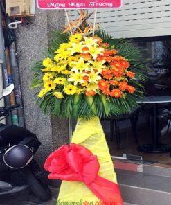 Hoa chúc mừng khai trương-Đồng tiền vàng, cam-Hoa ly-hoa thiên điểu