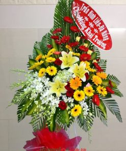 Hoa tặng khai trương Đồng tiền đỏ, vàng- cẩm tú cầu-lan thái trắng-hoa ly