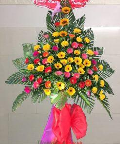 Hoa tặng khai trương đồng tiền- Hướng Dương