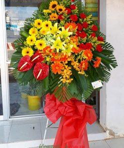Hoa tặng khai trương hồng môn-đồng tiền đỏ, vàng-hướng dương-hoa ly-hoa lan mokara