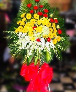 hoa chúc mừng khai trương- lan thái trắng, Đồng tiền vàng-Đỏ- Hoa ly