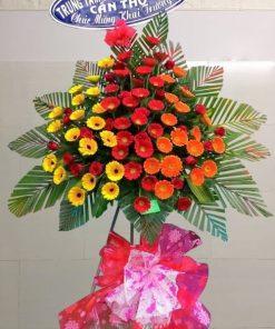 Kệ hoa chúc mừng Đồng Tiền đỏ, cam, vàng- Hoa hồng đỏ