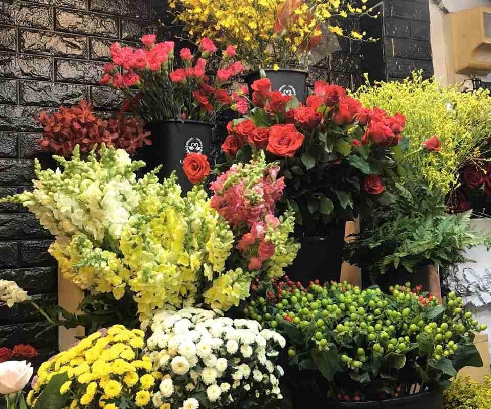 hoa được trưng bày và bảo quản cẩn thận
