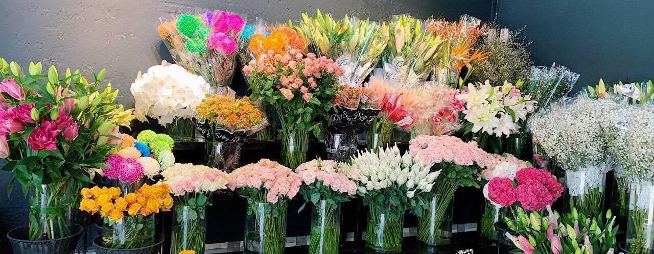 Hoa Trưng Bày Tại Shop Hoa Tươi Hòa Thành Tây Ninh, Luôn Tươi Mới Cập Nhật Hoa Mỗi Ngày