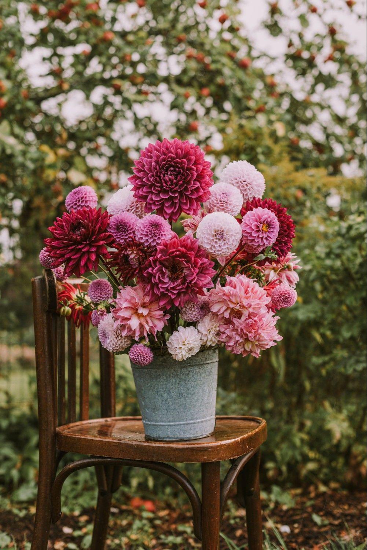 shop hoa tươi Tân Châu