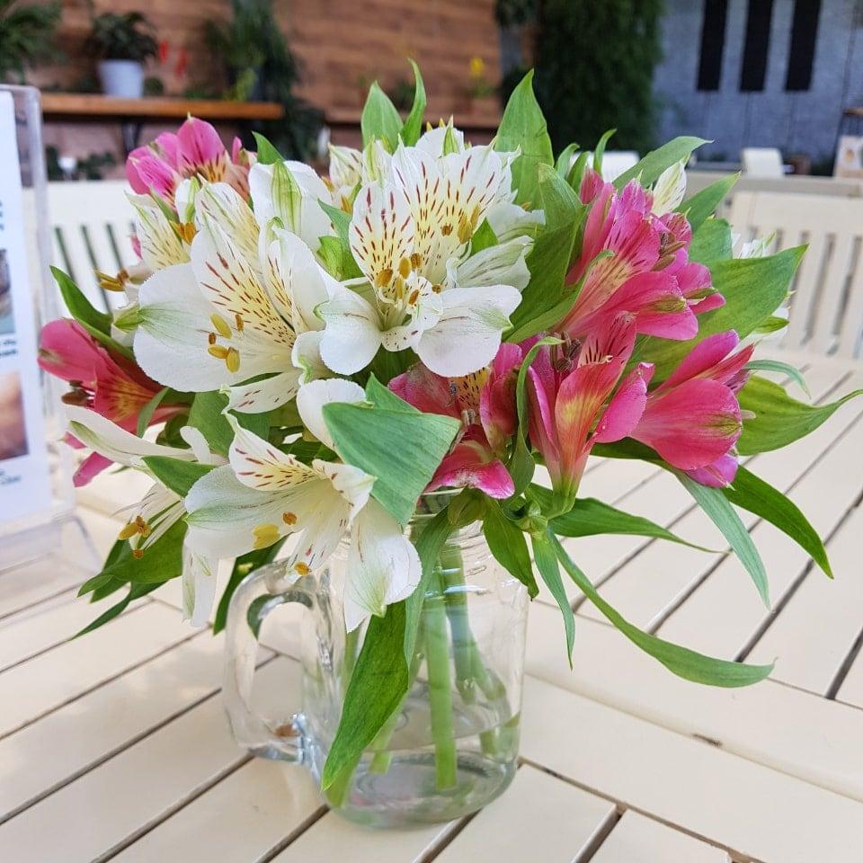Vẻ đẹp hoa thủy tiên